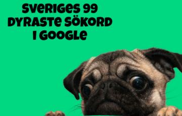topdog som presenterar dyraste sökord i google